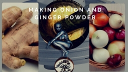 Making Onion and Ginger Powder
