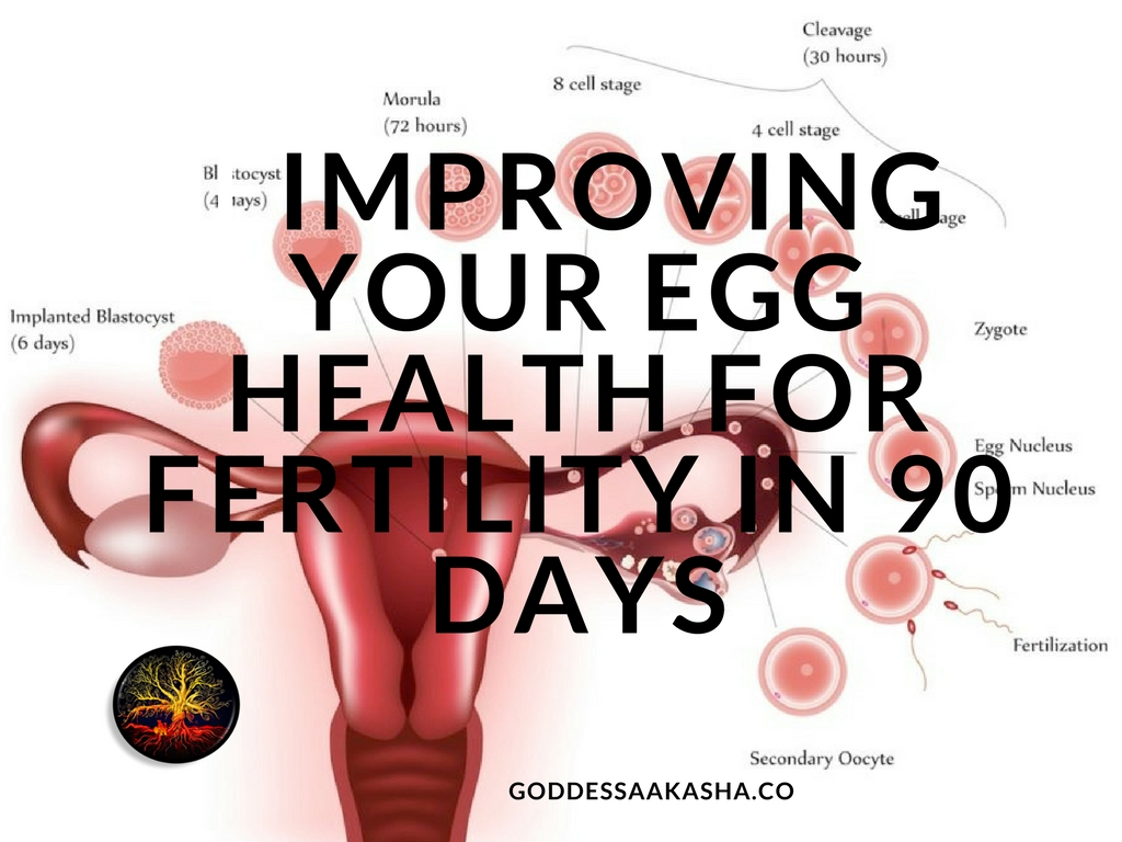 Agree, remarkable egg nucleus soul sperm pity, that