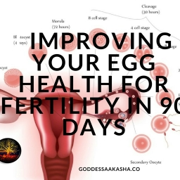 Improving Your Egg Health For Fertility In 90 Days