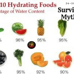 Myths About Survival That Could Possibly Get You Killed 34-36